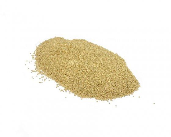 Organic Amaranth Grain image