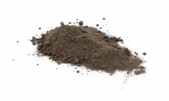 Organic Vanilla Bean Powder image