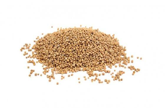 Yellow Mustard Seeds image