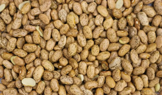 Pinto Beans image