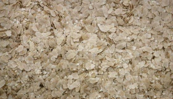 Ancient Grains Organic Porridge image