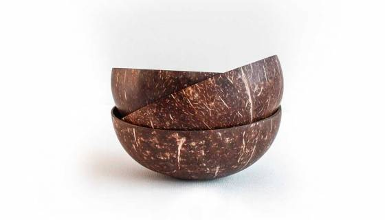 Coconut Bowl and Spoon Combo image