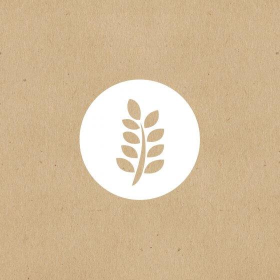 Organic Mini Figs image